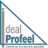 IDEAL PROFEEL