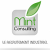MINT Consulting